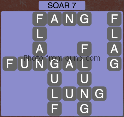 Wordscapes Soar 7 (Level 919) Answers