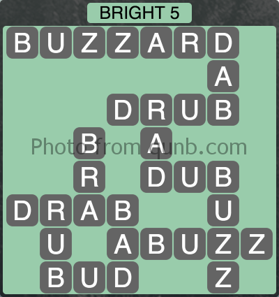 Wordscapes Bright 5 (Level 1141) Answers