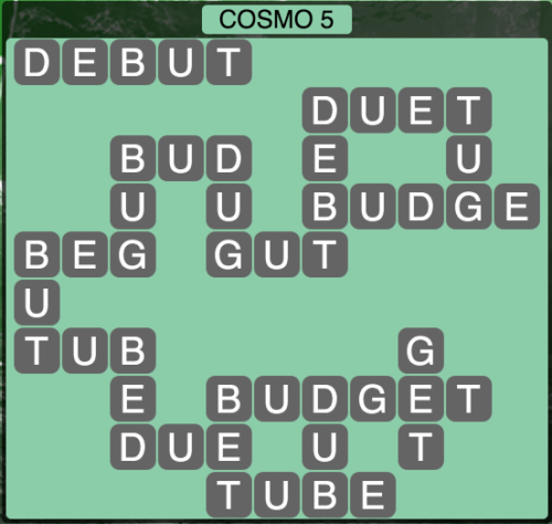 Wordscapes Cosmo 5 (Level 1365) Answers