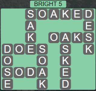Wordscapes Woods Bright 5 - Level 2309 Answers